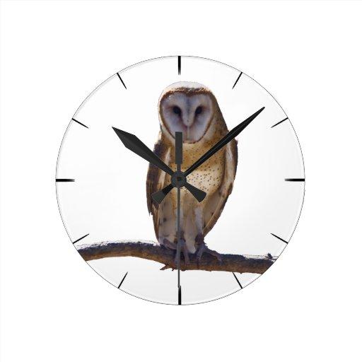 Barn Owl Clocks