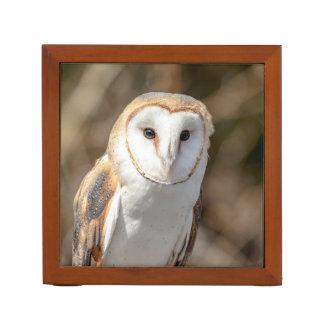 Barn Owl Desk Organiser