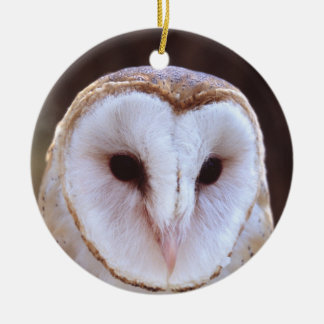 barn owl face ceramic ornament