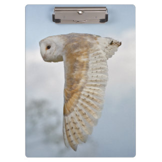 Barn Owl in Flight Clip Board