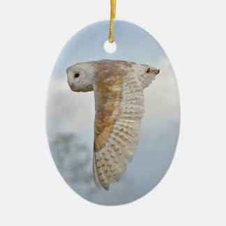 Barn Owl in Flight Ornament