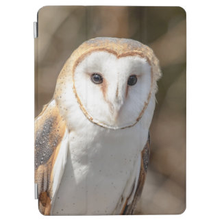 Barn Owl iPad Air Cover