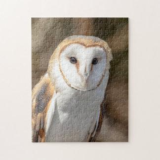 Barn Owl Jigsaw Puzzle