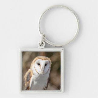 Barn Owl Key Ring