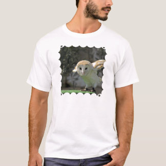 Barn Owl Men's T-Shirt