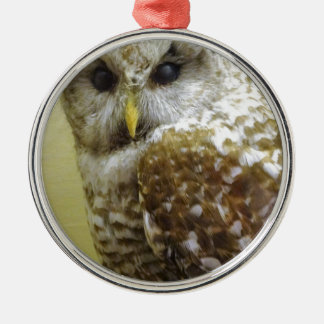 Barn Owl Metal Ornament