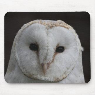 Barn Owl Mouse Pad