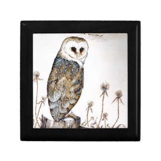 Barn Owl on the hunt Gift Box