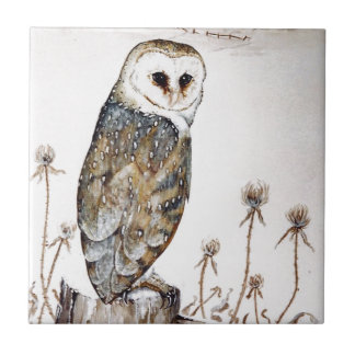Barn Owl on the hunt Tile