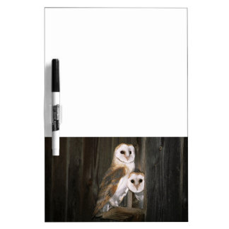 Barn Owl Pair Dry Erase Board Message Board