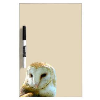 Barn Owl Peek Dry Erase Board