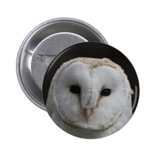 Barn Owl Pin