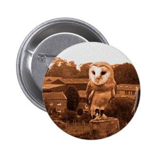 Barn owl pins