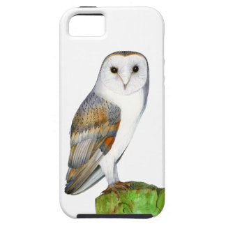 Barn Owl Tyto Alba Watercolor Artwork Print Case For The iPhone 5
