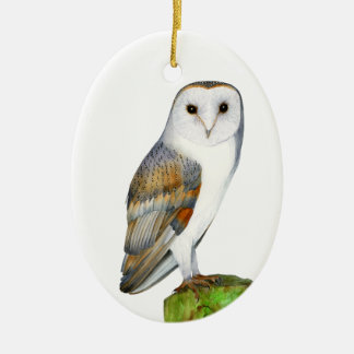 Barn Owl Tyto Alba Watercolor Artwork Print Ceramic Ornament