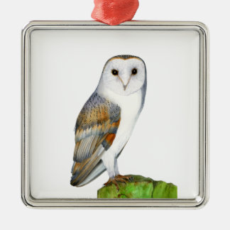 Barn Owl Tyto Alba Watercolor Artwork Print Metal Ornament