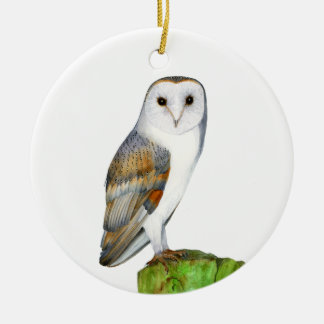 Barn Owl Tyto Alba Watercolor Artwork Print Round Ceramic Decoration