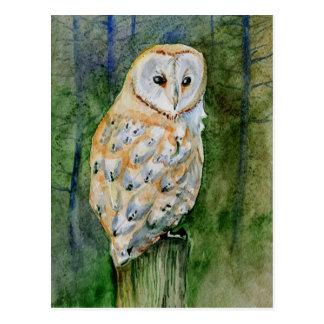 Barn owl watercolor postcard
