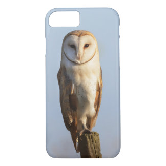 Barn owl with a blue sky background iPhone 7 case