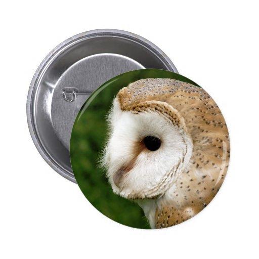 BARN OWLS BUTTONS