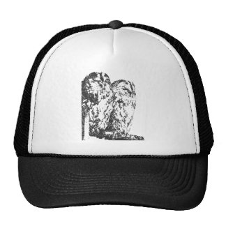 Barn Owls Cap
