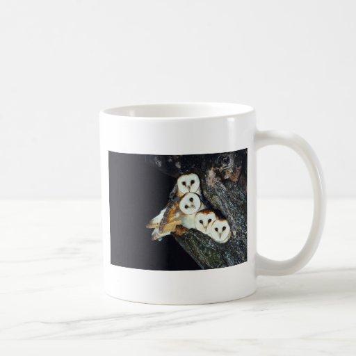 Barn Owls in a Tree Coffee Mug