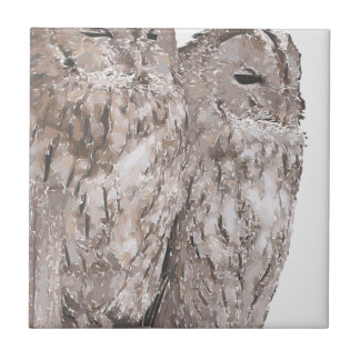 Barn Owls Small Square Tile