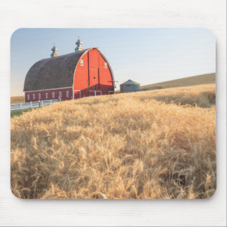 Barn, summer wheat fields near Sprague, Eastern 1 Mouse Pad