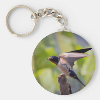 Barn Swallow Bird Photo Key Ring