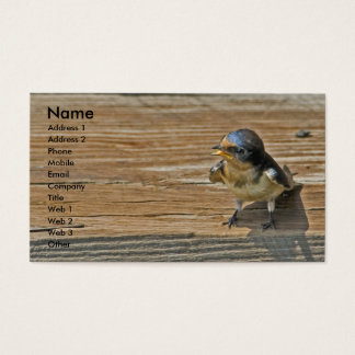 Barn Swallow Business Card