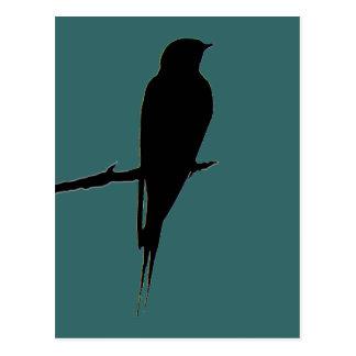 Barn Swallow green Postcard