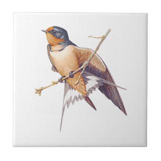 Barn Swallow Tile. Ceramic Tile