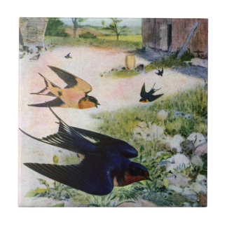 Barn Swallows Fly Around Old Outbuildings Small Square Tile