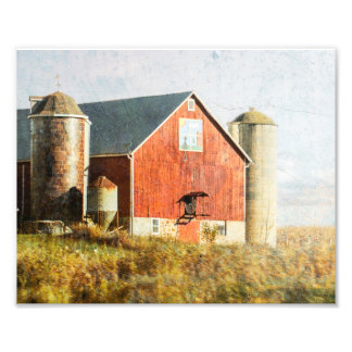 Barn with Barn Quilt Cat Photograph