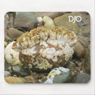 Barnacle Mohawk Beach Rock Mouse Pad