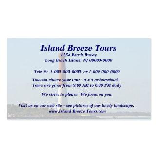 Barnegat Lighthouse Long Beach Island New Jersey Pack Of Standard Business Cards