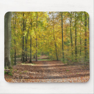 Barnimer Land Wald Mouse Pad
