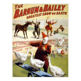 Barnum & Bailey - Wonderful Performing Geese Postcard