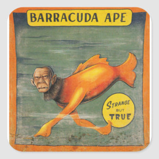 Barracuda Ape Square Sticker