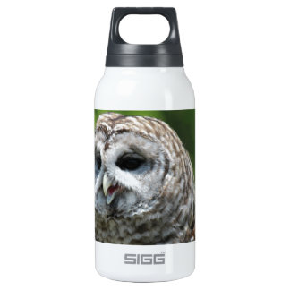 Barred Owl 0.3 Litre Insulated SIGG Thermos Water Bottle