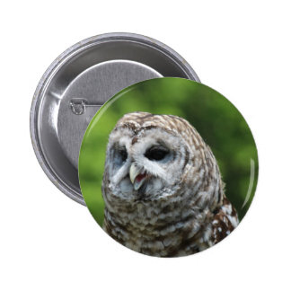 Barred Owl Buttons