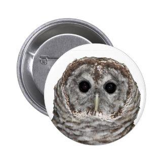 Barred Owl Pins