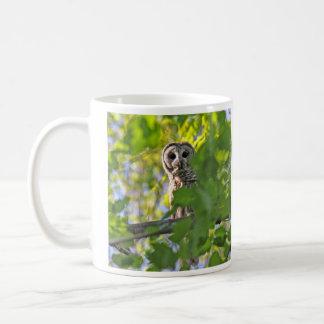 Barred Owl Basic White Mug