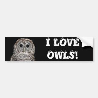 Barred Owl Bumper Sticker