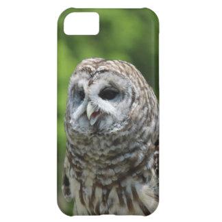 Barred Owl iPhone 5C Cases