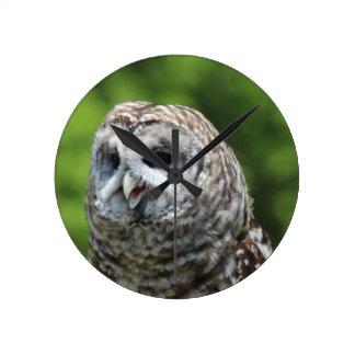 Barred Owl Round Wall Clock