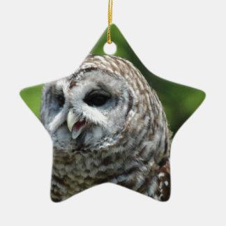 Barred Owl Ornaments