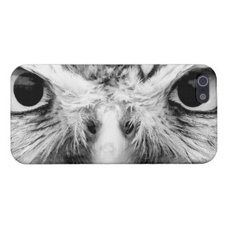 Barred Owl in Black and White Cover For iPhone 5/5S