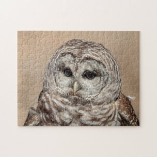 Barred Owl in flight Jigsaw Puzzle