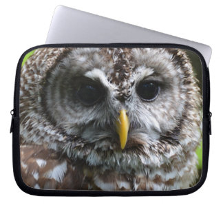 Barred Owl Computer Sleeves